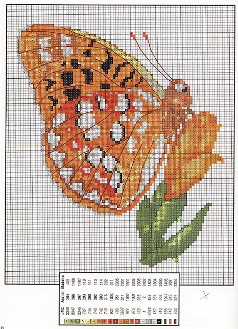 Grille gratuite point de croix ronde des papillons broderie - Grille broderie gratuite ...